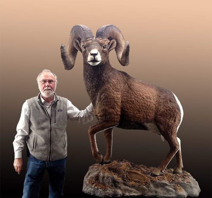 Life Size Rocky Mountain Big Horn Sheep